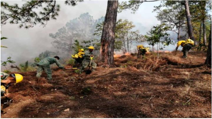México arde con 46 incendios forestales a lo largo del país