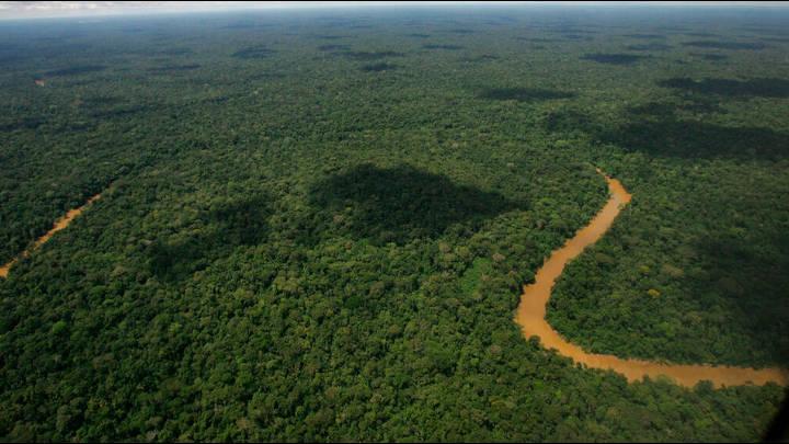 Los protectores del ambiente están en peligro en Colombia