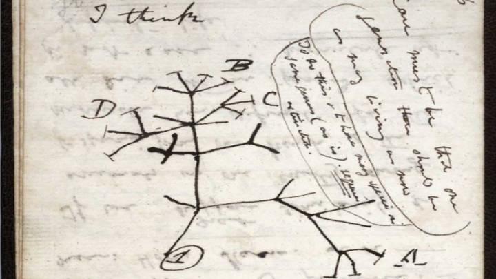 Hurtados 2 cuadernos pertenecientes a Charles Darwin de biblioteca de Cambridge